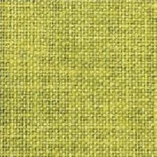 ART PAPER couleur: vert lime (VN0111)