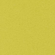 ROMA couleur: vert citron (VP0906)