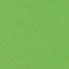 ROMA couleur: vert clair (VP0907)