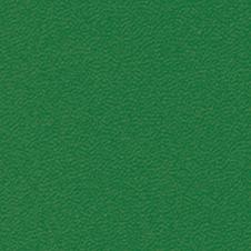 ROMA couleur: vert foncé (VP0908)